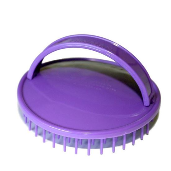 Picture of Denman Shower Brush D6