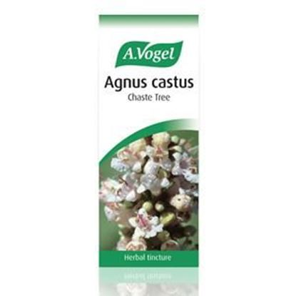 Picture of A.Vogel  Agnus Castus Herbal Tincture