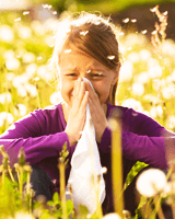 Picture for category Hayfever & Allergies